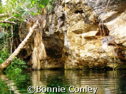 Chac Mool Cenote at Riviera Maya by Bonnie Conley 
